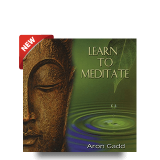 Learn to Meditate by Aron Gadd